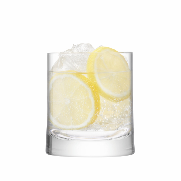 glass gin tumbler filled with gin and tonic and 2 lemon slices